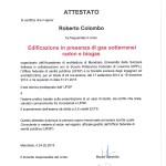 radon_Roberto
